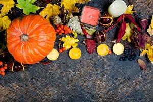 autumn leaves, pumpkin, chestnuts, c