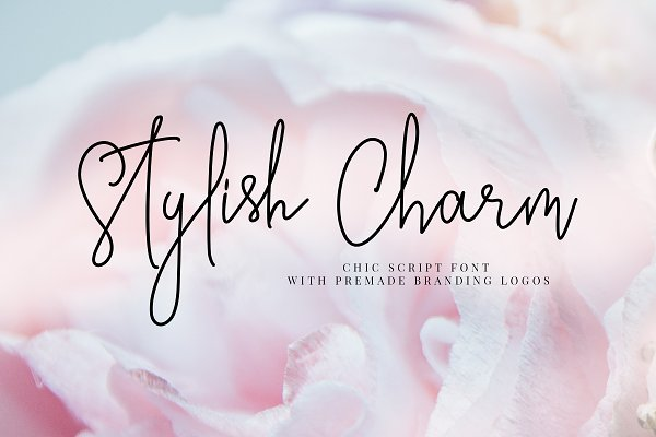 Stylish Charm Brand & Logotype Font