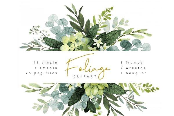 Foliage watercolor clipart