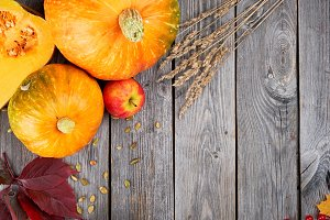 Autumn harvest Thanksgiving pumpkins
