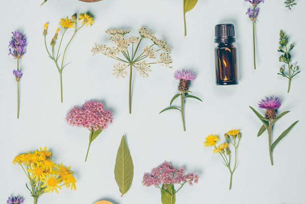 Health Stock Photos - Floral pattern made of wild healing