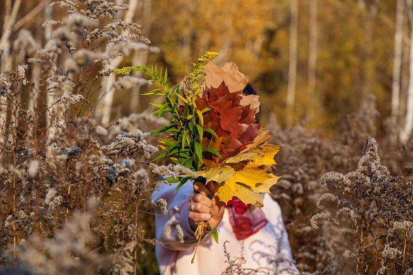 autumn bouquet of leaves
