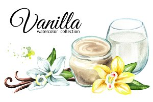 Vanilla. Watercolor collection