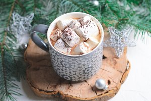 Hot Cocoa Drink with Marshmallow in