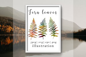 Watercolor  fern leaves