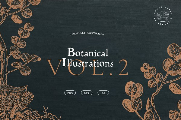 Illustrations and Illustration Products: Nomad Visuals - Botanical Illustrations Vol. 2