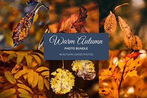 Warm Autumn Bundle