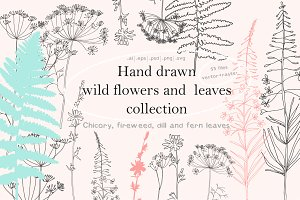 Wild flowers and leaves collection