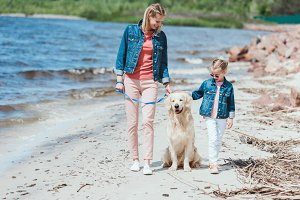family walking with golden retriever
