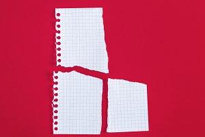 torn blank white sheet in a box