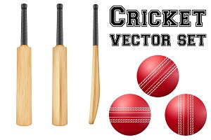 Set of Cricket Equipment