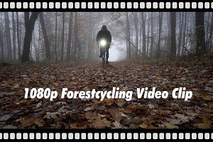 Video: Cyclist in rainy forest