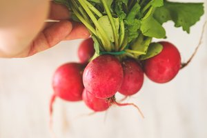 Fresh radish on wooden board for