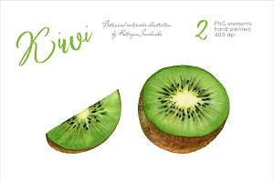 Kiwi. Watercolor fruits