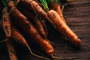 Fresh carrots from the garden close-