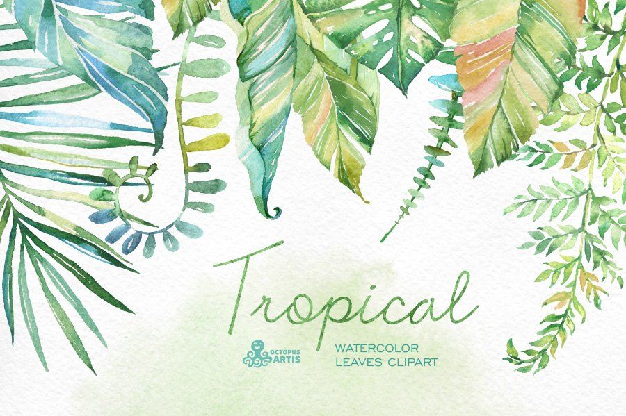 Tropical Watercolor Leaves Graphic Objects Creative Market