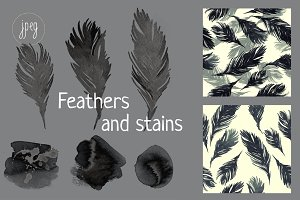 feathers and stains