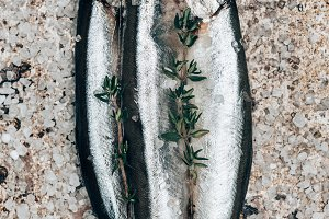 Three salted fish with rosemary on r