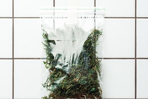 ziplock plastic bag with dried plant