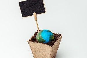 earth model in flower pot with soil