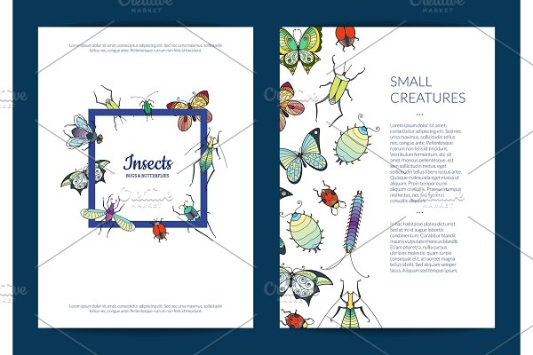Vector hand drawn insects card or