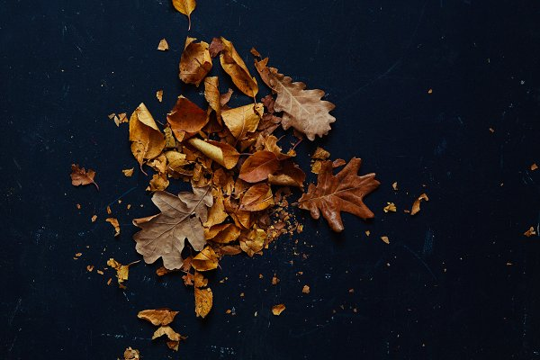 Abstract Stock Photos - Autumn Background
