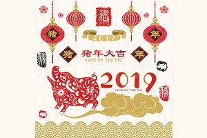 The Year Of Pig 2019 Collections