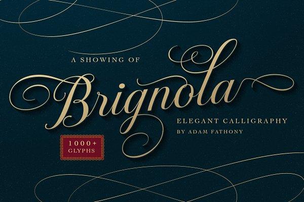 Fonts: Adam Fathony - Brignola - Elegant Calligraphy