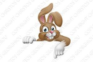 Easter Bunny Rabbit Pointing Cartoon