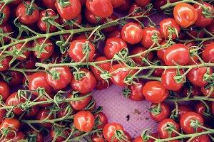 bio tomatoes  farmer's market
