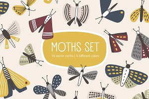 Colorful moths set