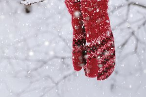Red knitted mittens in snowy forest