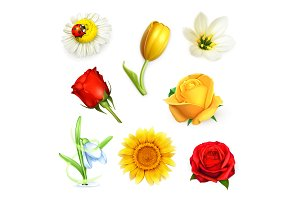 Summer flowers vector icons