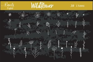 Wedding wildflower invitation clipar