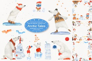 Arctic tales: facts about bears