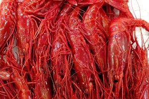 Fresh red prawns at market