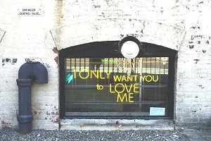 I Only Want You to Love Me Neon Sign