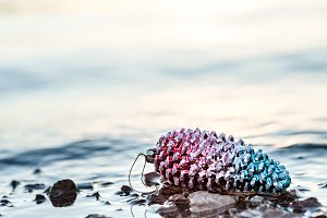 Colorful Christmas PIneCone