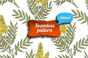 Senna seamless pattern + bonus