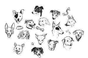 Dog Pack! 15 Marvelous Mutts