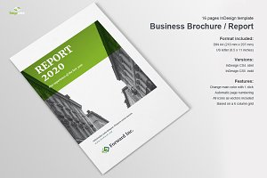 Business Brochure / Report