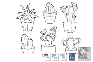Cactuses and succulents in pots set