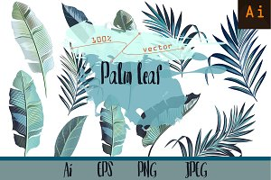 Palm leafs. Vector ClipArt set