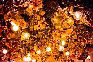 light bulb on christmas tree