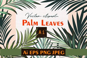 Palm leafs. Vector ClipArt set Wonde