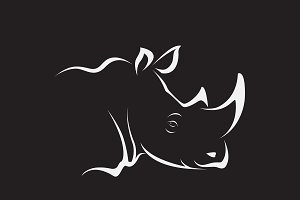 Vector of rhino head. Wild Animals.