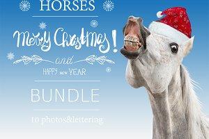 Christmas Horses Bundle - 10 photos