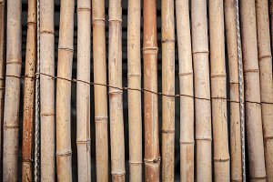 Dry Bamboo Wall tied with rope Textu