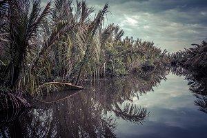 Mystic nice view of the wetlands