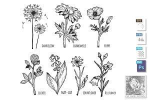 Different field spring flower set